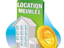 La location meubl e pour les non professionnels lmnp - Statut loueur meuble non professionnel ...