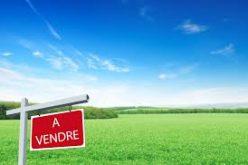 Comment choisir le terrain idéal pour bâtir sa maison ?