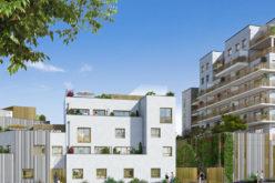 Situation du marché immobilier classique et Haute Qualité Energétique en France